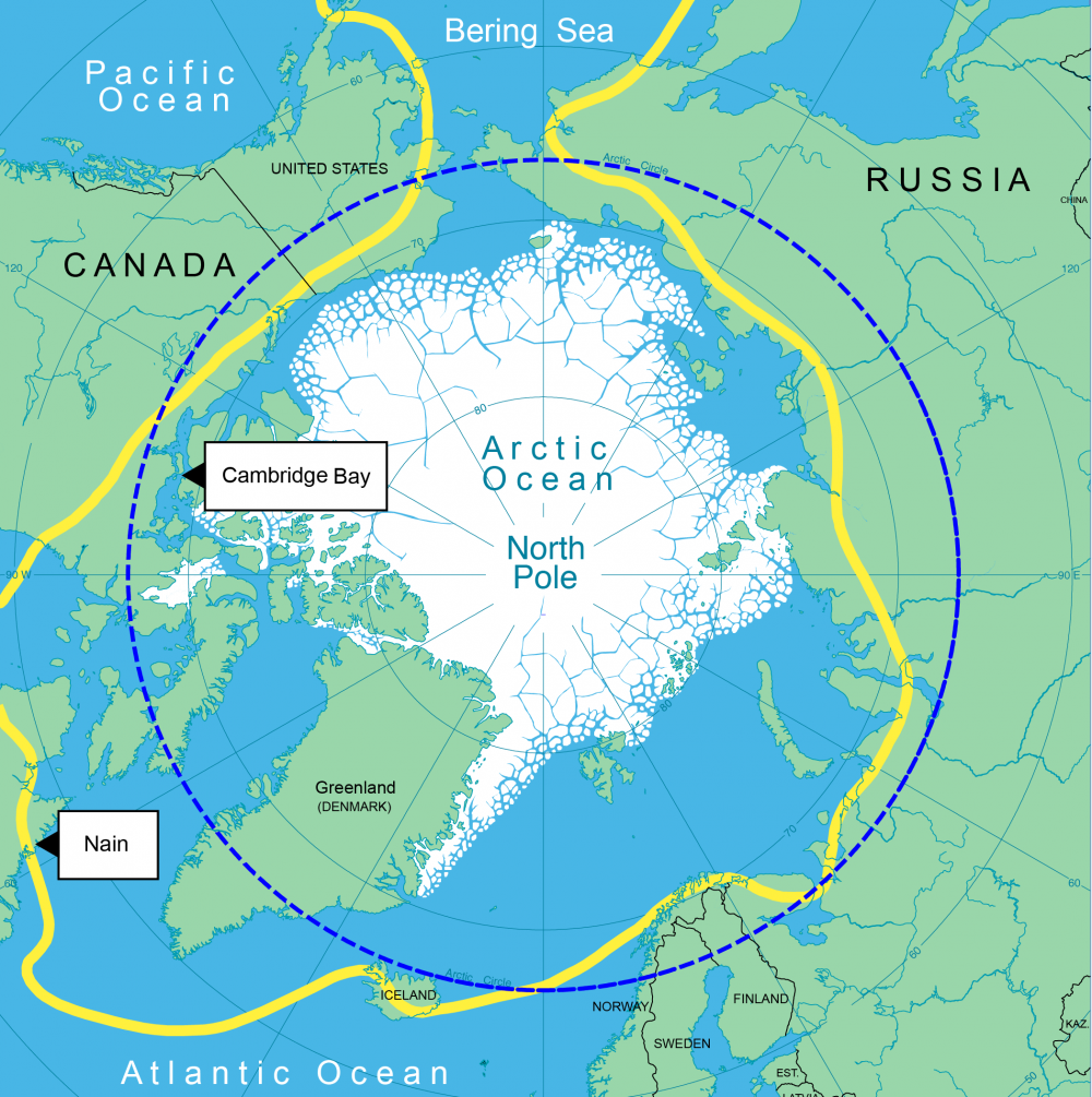 Arctic World Stories Young Voices - Arctic map